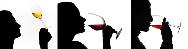 corso_di_degustazione_vini